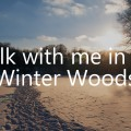 Walk with me in the Winter Woods