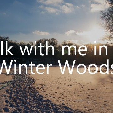 A Walk in the Winter Woods: A Video