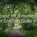 Video thumbnail of a wooded trail on a perfect summer day