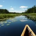 Canoe in BWCAW