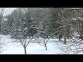December Snowfall Video