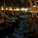 St Paul at night